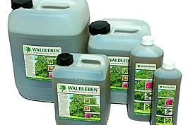 Waldleben - Waldleben